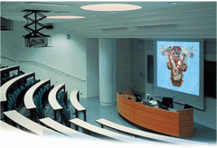 Ceiling mounted projector