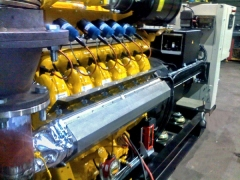 Standard gas & Combined Heat & Power (CHP) generators