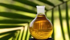 Kintas Palm Oil