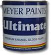 Ultimate Gloss Paint