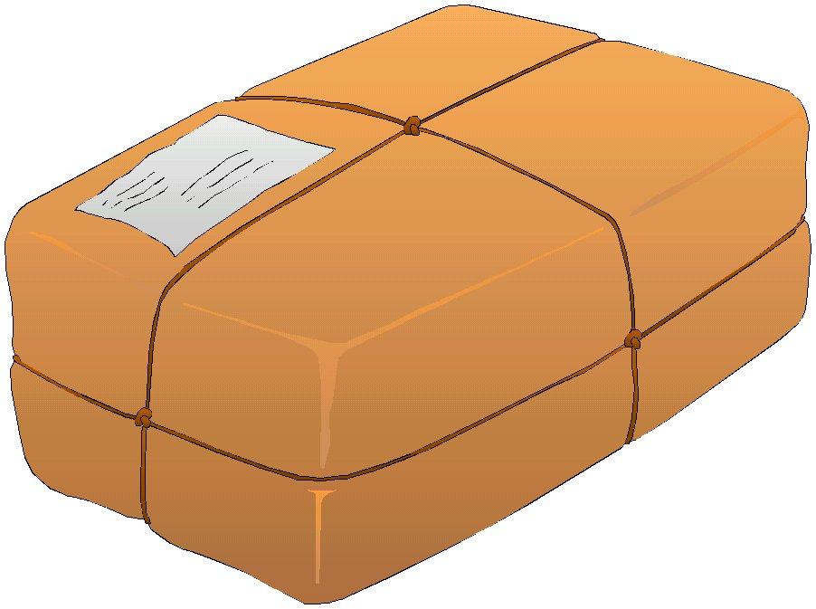 Order International Parcel Delivery Services