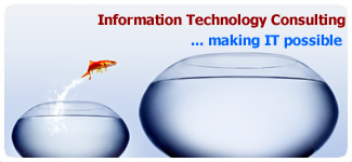 Order Information Technology Consulting