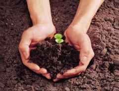 Environmental & Pollution Management