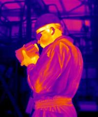 Thermographic Inspection
