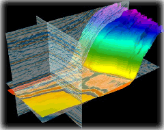 Seismic Project Management