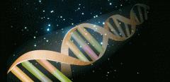 Genetic Diagnostics