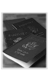 Immigration Law Services