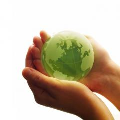 Environment Sector Services