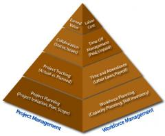 Project Management / Information System Delivery