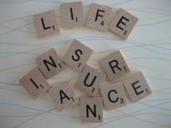 Life Insurance Assur Term Life