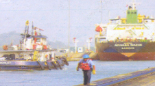 Sea- Freight Services