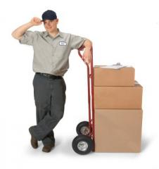 Next Day Am Delivery