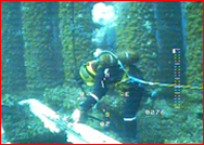 Subsea Engineering And Diver Intervention