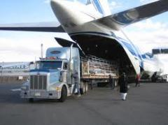 Trusted and Reliable Freight Forwarding Company in