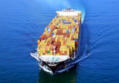 Sea Freighting